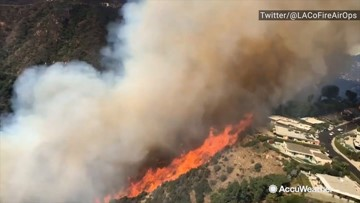 Aerial view of the Palisades Fire