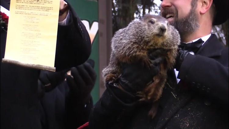 AccuWeather scoops Punxy Phil with early spring preview
