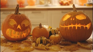 BFF Fun in the Fall! The Best Activities for the Best of Friends