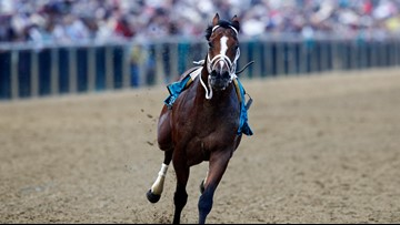 Riderless horse finishes Preakness Stakes race without jockey