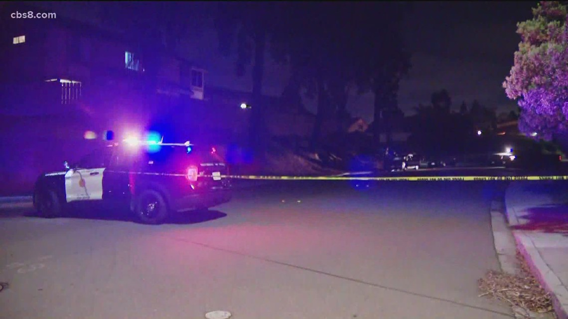 Man found shot to death in car in Bay Terraces