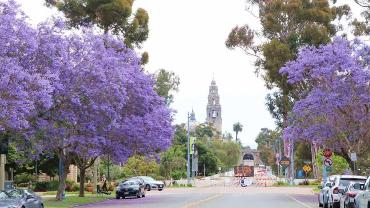 PHOTOS: San Diego weather - June 2021