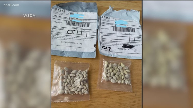 More mystery seed packages arrive in San Diego