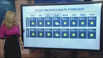 MicroClimate Forecast Thursday August 15, 2019 (Morning)
