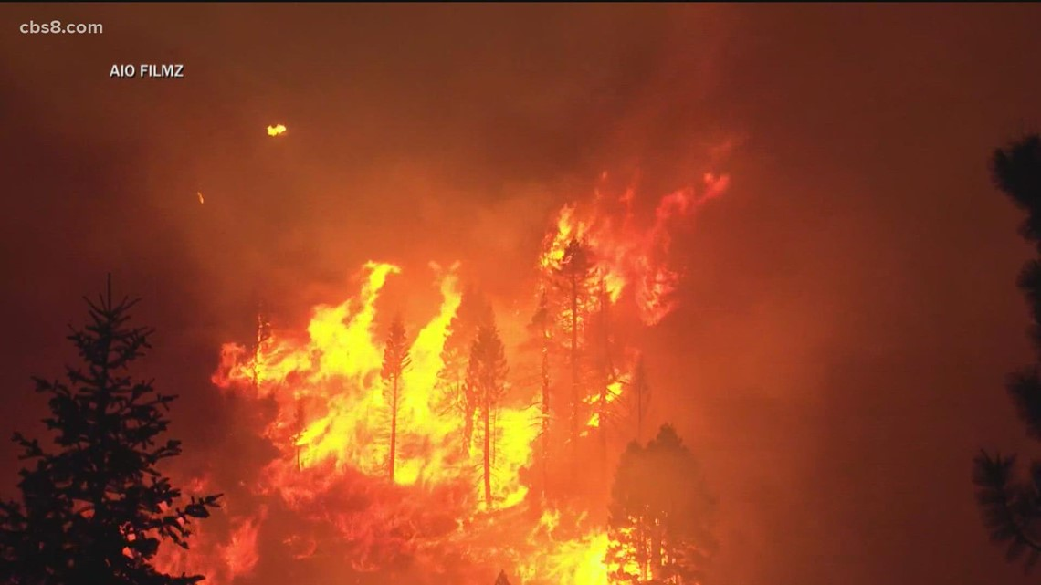 San Diegans at Caldor Fire: Man makes 500-mile drive from Tahoe, SD Humane Society rescuing animals fire's path