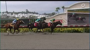 Del Mar Thoroughbred Club officials say changes at track will improve horse racing safety