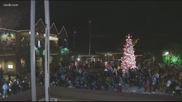 14th annual Grinch Christmas tree lighting held in Balboa Park