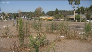 Residents report weeds growing wild on San Diego medians