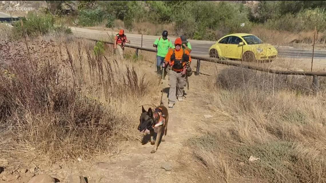 Maya Millete volunteer search teams using cadaver dogs