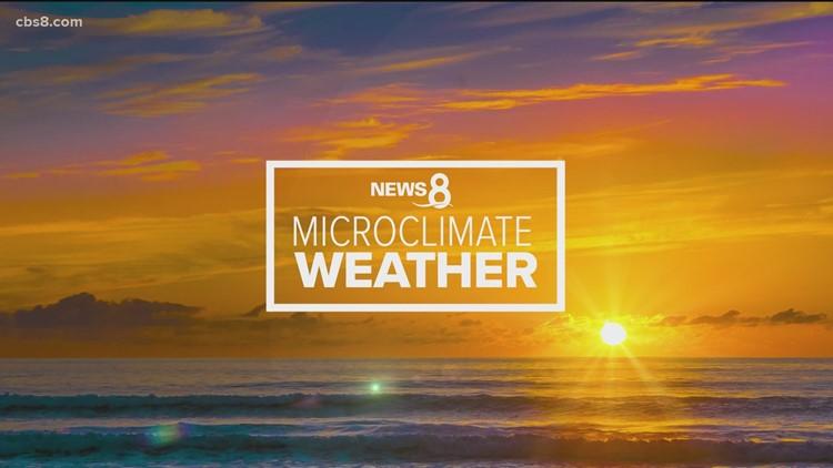 MicroClimate Forecast: February 21, 2021 – 5PM