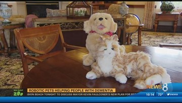 Robotic pets helping people in San Diego with dementia