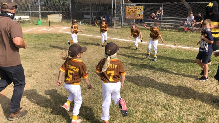 'Queen Bees' all-girl T-ball team is creating a real buzz