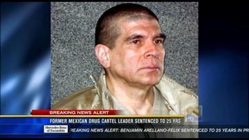 Former leader of Arellano Felix drug cartel sentenced to 25