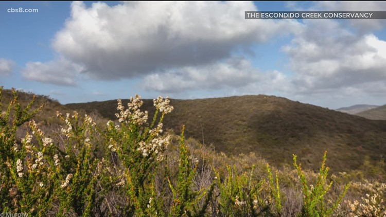 LeoMar: New land preserve in North County San Diego
