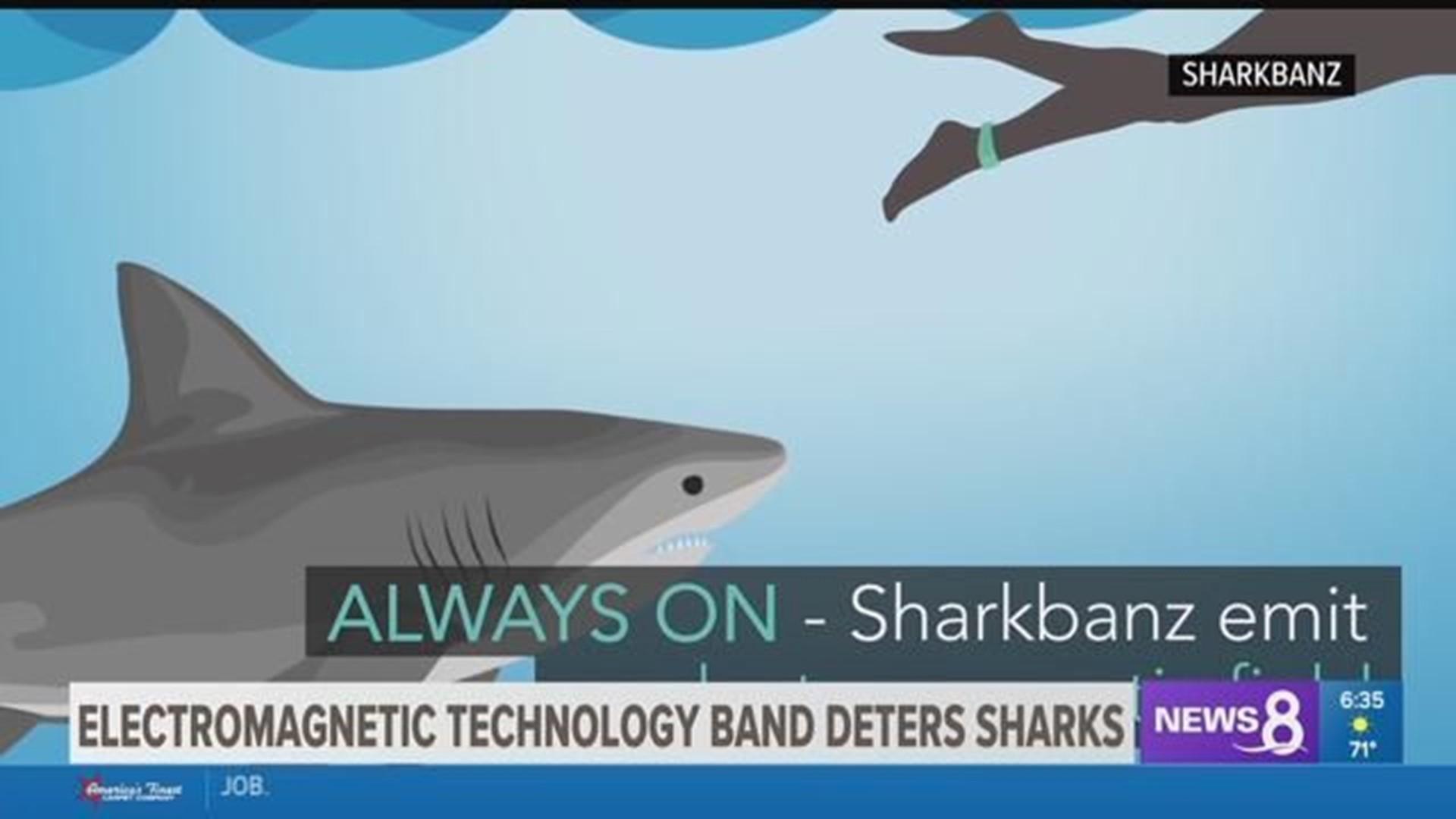 Sharkbanz Shark Bite Deterrent Adds Protection Cbs8 Com
