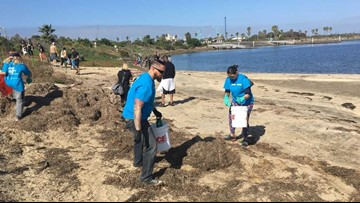 35th Annual Coastal Cleanup Day nets 145,000 pounds of trash