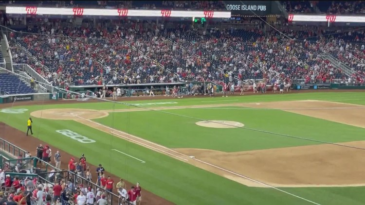 Padres fan heard shots at Nationals game then saw heroic acts from Padres players