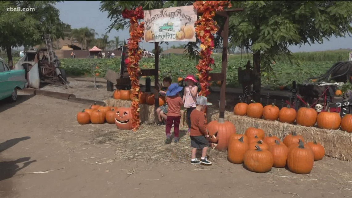 Business is booming in Ramona and Julian for the start of fall
