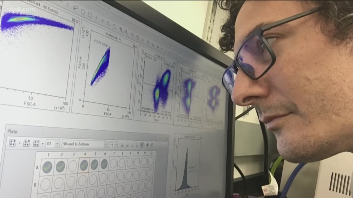 Scientist looking at computer graph