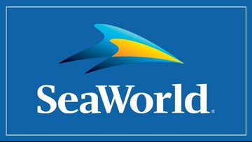 SeaWorld CEO abruptly resigns after 7 months amid strife with board