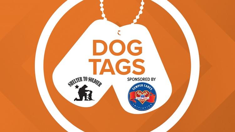 News 8 Dog Tags