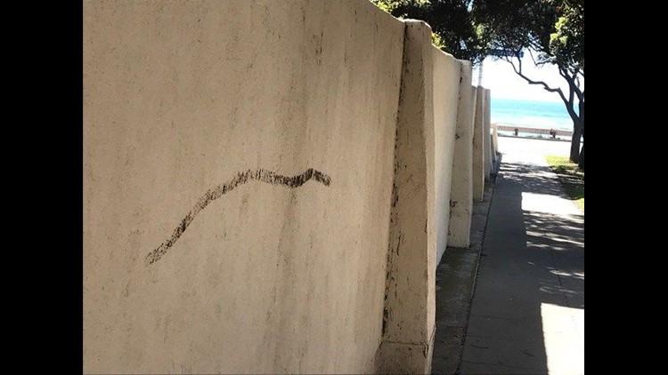 Poop on wall