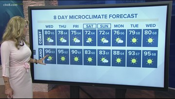 MicroClimate Forecast Wednesday August 14, 2019 (Morning)