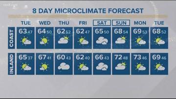 MicroClimate Forecast January 14 (Morning)