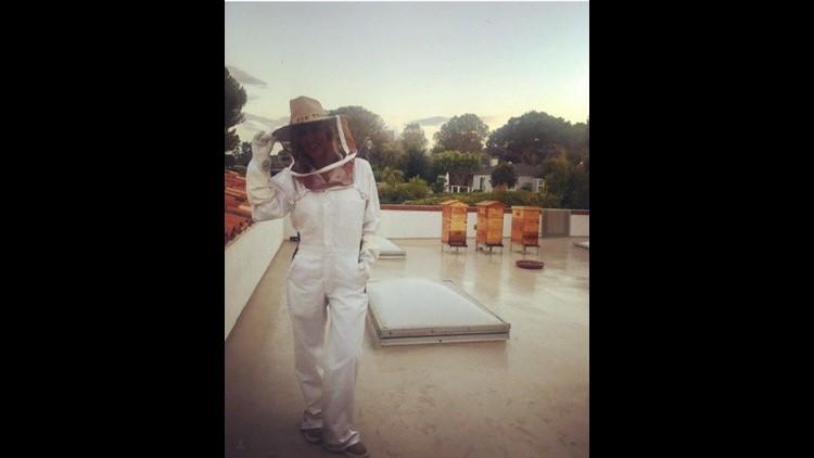 Honey Hive Ashley