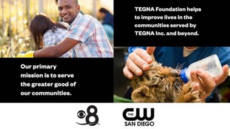 TEGNA Foundation: Apply for a grant