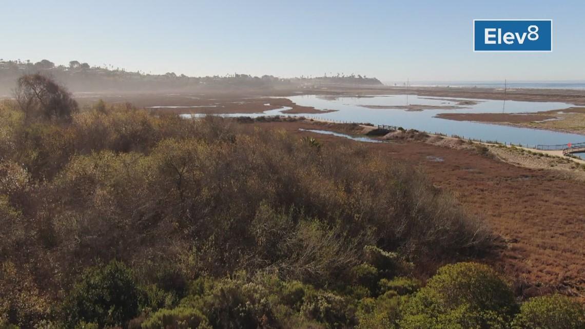Drone: San Elijo lagoon
