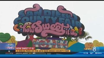 san diego county fair 2020 theme