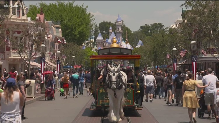 Chula Vista mother honors daughter with free trips to Disneyland