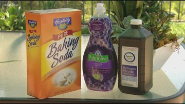 VERIFY: What gets rid of skunk spray smell?