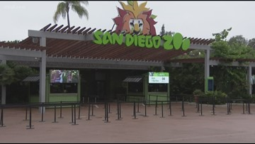 San Diego Zoo launches online education program