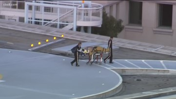 12-year-old boy injured in Vista hit and run; deputies searching for driver