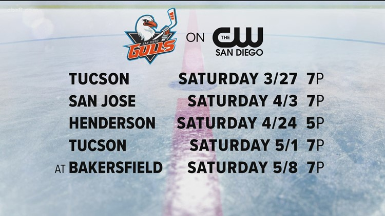 Gulls hockey will soon be on your TV