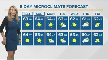 MicroClimate Forecast Friday Jan. 10, 2020 (Morning)