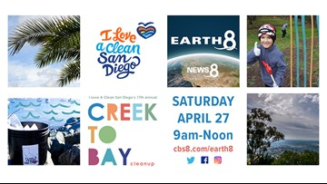 Creek To Bay Cleanup - Thank you San Diego!
