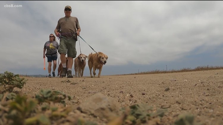 Fight over dog park at Fiesta Island