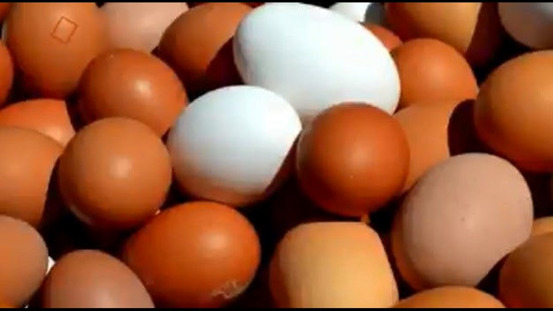 Verify: Are brown eggs healthier than white ones?