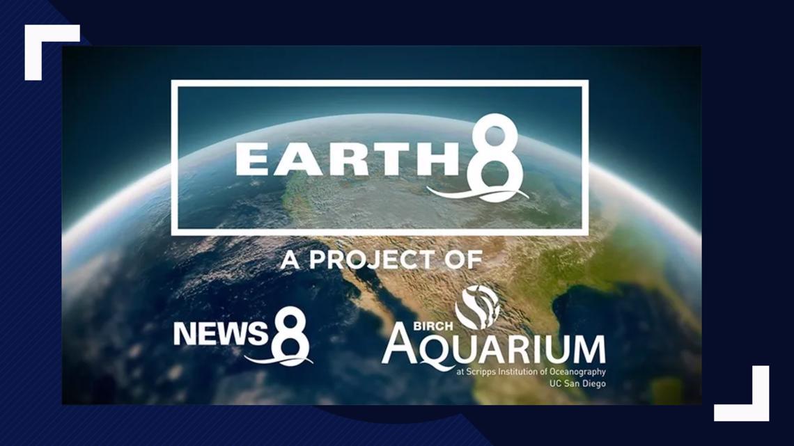 Earth 8