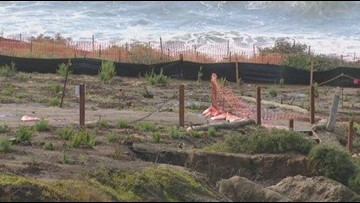 Your Stories Investigation: Concerns over Sunset Cliffs restoration