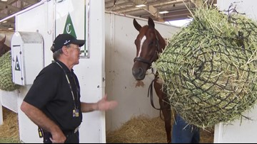 Behind-the-scenes look at Del Mar Thoroughbred Club vet inspection of horse