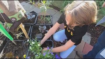 Milkin' San Diego: Kindness garden in El Cajon