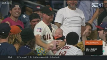 News 8's Neda Iranpour's husband goes viral after catching homerun ball while holding baby