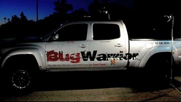 Bug Warrior