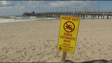 South Bay leaders ask Trump to help after 160 million gallons of sewage spill into the Tijuana River from Mexico
