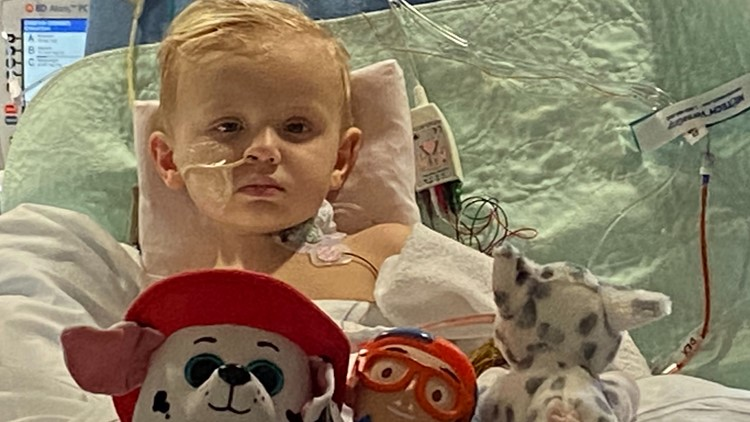 GoFundMe for 3-year-old with rare staph infection