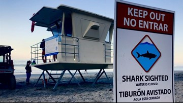 Shark sighting reported at Silver Strand, Imperial Beach